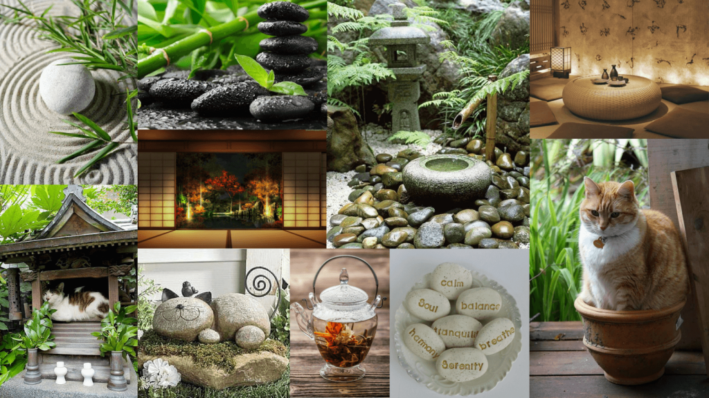 you&meow-zen-garden-montage